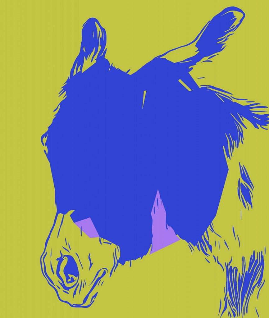 Rosa Bonheur's Donkey